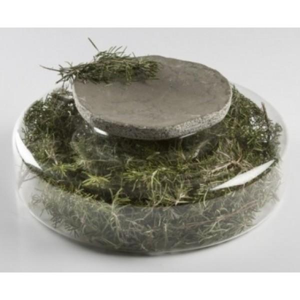 Assiette en marbre gris 100% Chef & support Advance