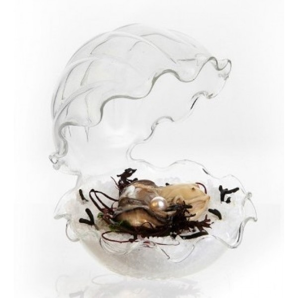 Assiette en verre 100% Chef, huître perlière Ø 12 cm (x 6)