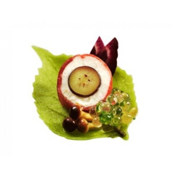 Feuilles de printemps vertes à garnir, décors alimentaires (x 480)