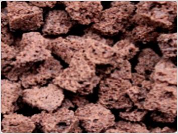 Morceaux de brownies