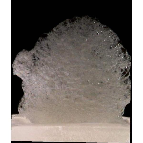 Lecite ou lécithine Texturas, émulsifiant (300 g)
