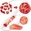 Transglutaminase Activa EB (viande), Sachet de 1 kg